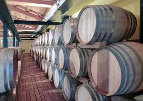 Casks in wine cellar photo