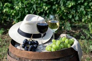 Red and white wine with grapes in nature photo