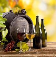 Wine still-life photo