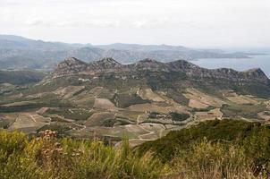 vignoble de Patrimonio en Corse photo