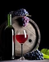 composition of blue grape and red wine