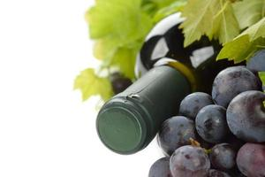 Wine and white grapes