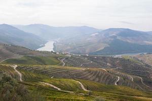Douro Valley photo