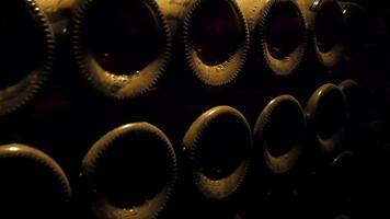 as garrafas encontradas na prateleira da adega