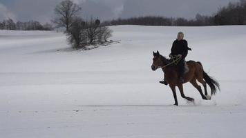 Reiter in der Winterlandschaft video