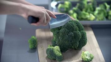 mujer corta el brócoli en un escritorio video