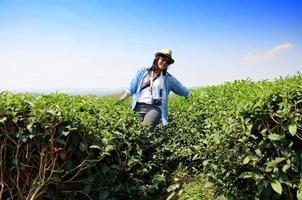Thai woman portrait on tea plantation at Doi Mae Salong photo