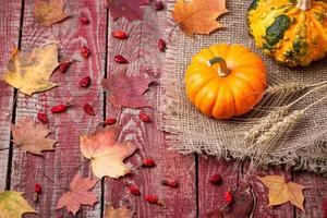Pumpkins, autumn leaves and a dogrose on a wooden table photo