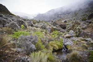 Mt Kilimanjaro, Around Karanga valley in the mist.