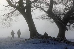caminhantes de inverno na névoa da manhã