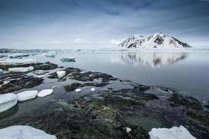 Arctic spring in Spitsbergen
