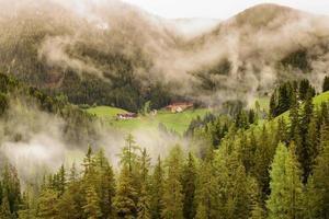 Dolomite in the mist
