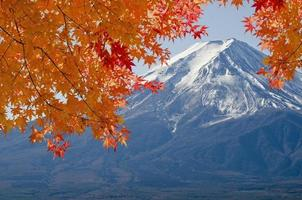 Mt.Fuji and Orange maple.