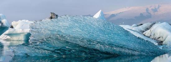 Drifting ice fragment in panorama of Jökulsárlón glacier lagoon, Iceland.