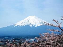 Fuji Mt. and cherry blossom