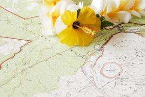 Navigation and Exploration