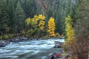 Autumn at the Wenatchee River.