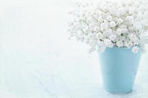Baby's breath flowers in a vase photo