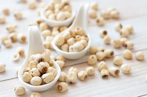 sementes de lótus
