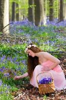 Picking springtime wildflowers