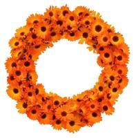 Calendula flowers circle shape isolated. photo