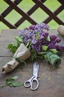 ramo de lilas en corona de papel con tijeras vintage foto