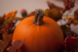 Pumpkin in a autumn wreath photo