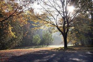 Slavic autumn