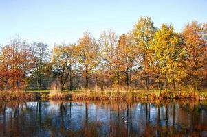 vista de otoño