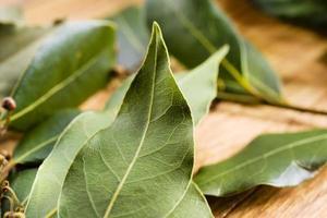 macro de hoja de laurel. alimentos orgánicos