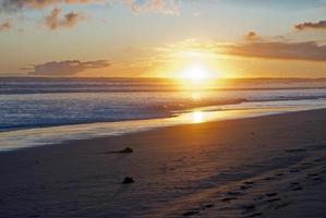 sunset at the beach photo