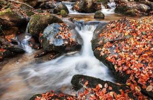 The creek in autumn photo