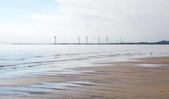 Seaside wind power turbines beach photo