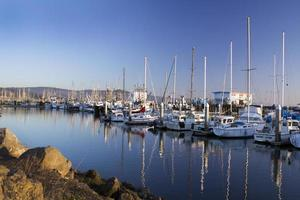 Sailboats Docked photo