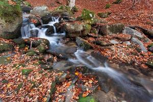 Stream in autumn photo
