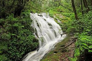 Waterfall at Kew Mae Pan