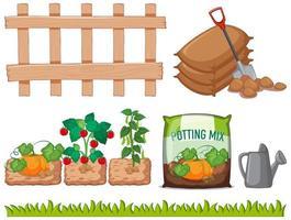 Set of garden growing elements vector