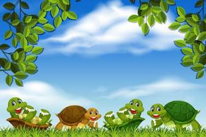 tortugas en el marco de la escena del parque