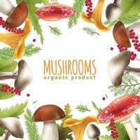 Mushrooms frame background vector