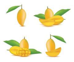 conjunto de frutas de mango realista