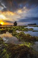 Rocky and mossy beach