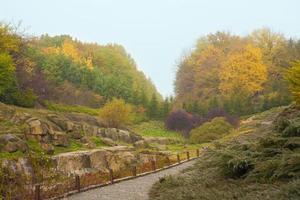 multi colored olod garden in autumn photo