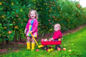 Happy kids picking apple on a farm