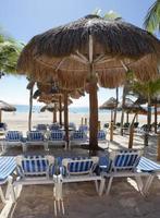 hermosa playa caribeña foto