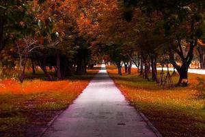 walkway park