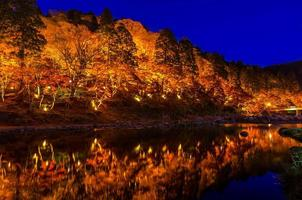 Light-up of Colorful Autumn Leaf Season in Japan