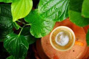 My home coffee, thailand, nakornratchasima photo