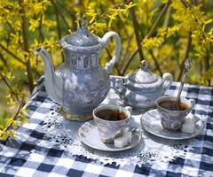 Afternoon tea in the garden photo