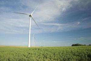 Wind Turbines at the Field photo