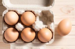 chicken eggs photo